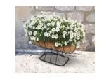 Cradle Planter  With Coco Liner - 24
