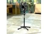Deluxe Pedestal Fan - 16